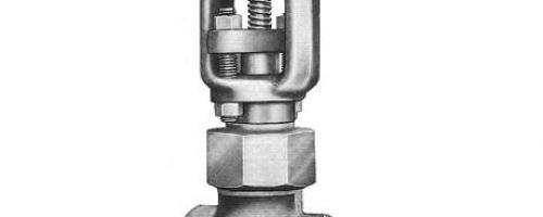 Válvula Gaveta Classe 800 – Castelo em Arco/Porca de União