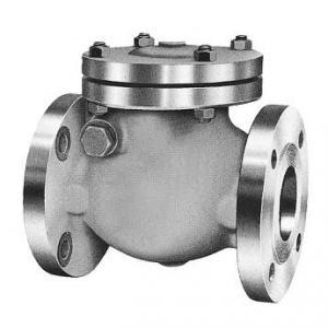 Válvula de Retenção Portilhola – Classe 150 – Aço Inox
